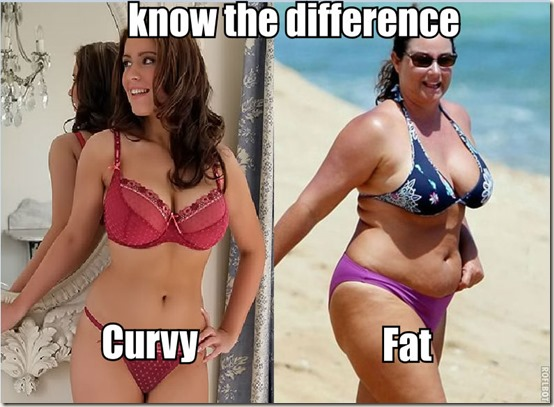 curvy and fat